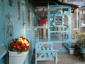 Cattery entrance